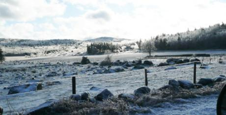 Icy farm fields